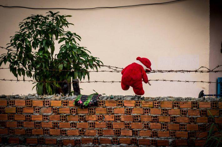 A teddy bear's failed escape efforts - Photo by Alex Leonard