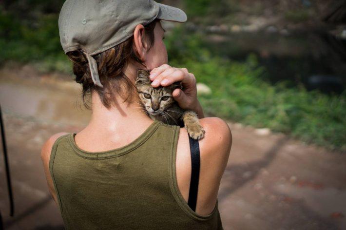 Comforting a kitten - A photo by Alex Leonard