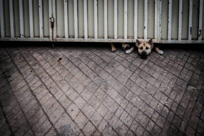 Stuck - A photo by Alex Leonard