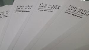 The Stones are Awake book cover